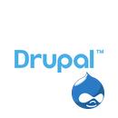 drupal cms install